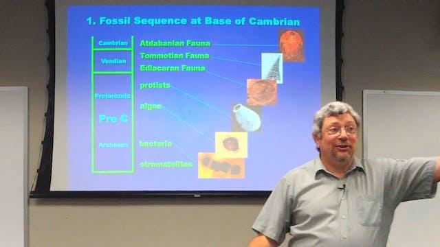 Paleontology: Pre-Flood Hydrothermal Biome