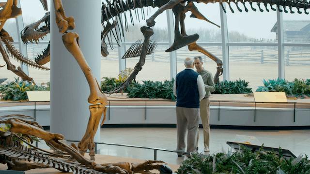 8. The Fossil Record & Design