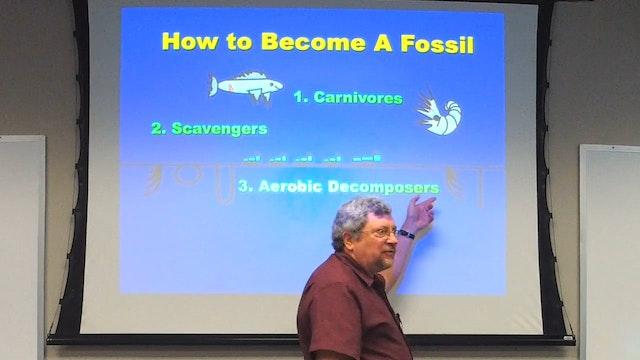 Paleontology: Fossil Record