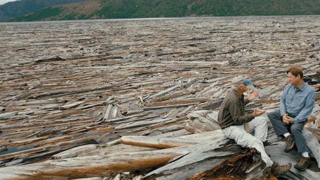 2. Spirit Lake & the Floating Log Mat