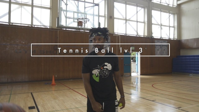 Tennis Ball LVL 3