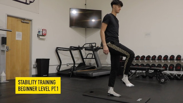 Stability Training Beginner Level Part 1