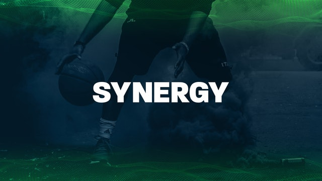 Synergy Introduction