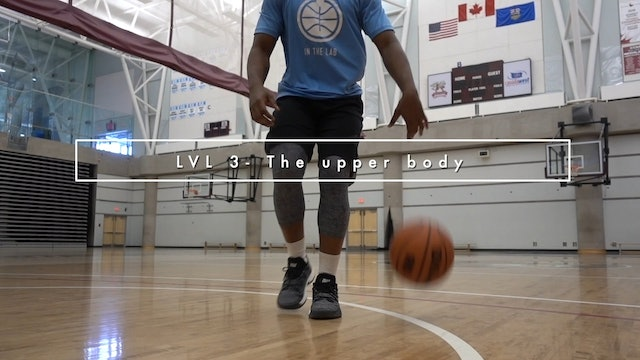 LVL 3 - The Upper Body