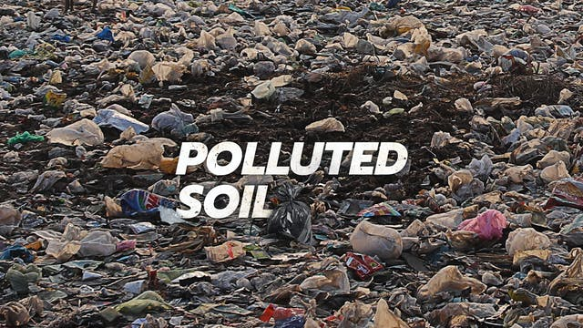 Below the Fold - Polluted Soil