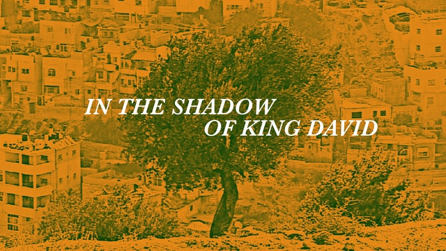 In the Shadow of King David