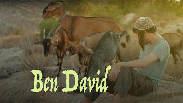 Ben David