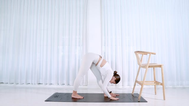 30min Full Body Barre 1 (SATISFYING)