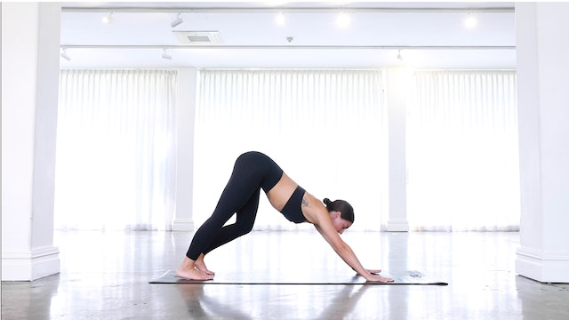 Downward Dog to Lunge