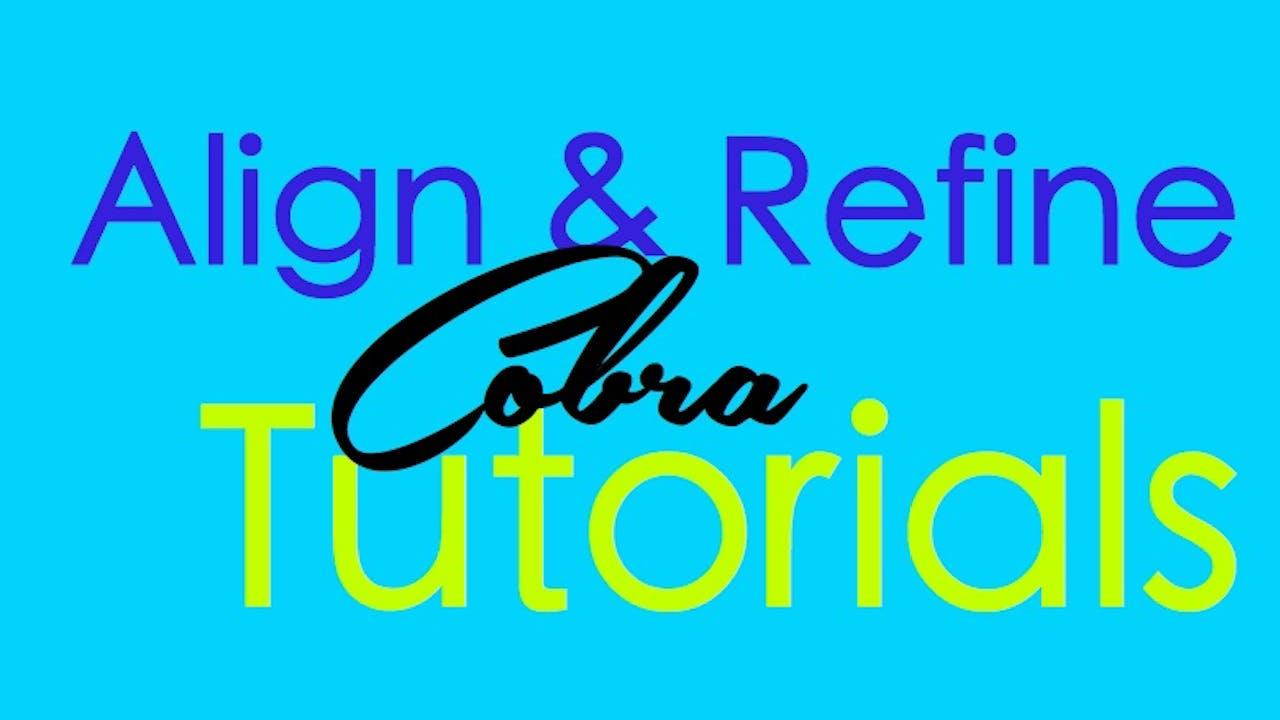 Align & Refine - Cobra