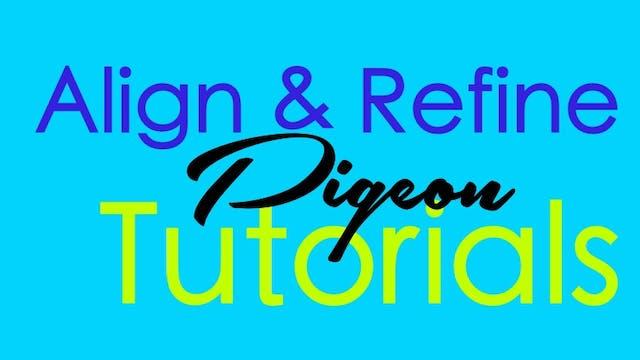 Align & Refine - Pigeon