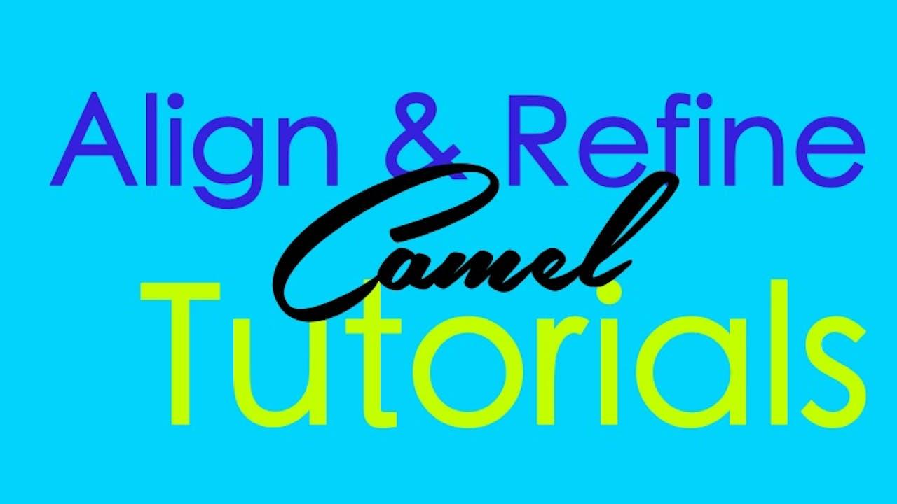 Align & Refine - Camel