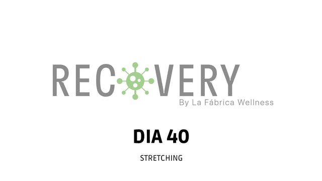 30Min -Stretching con Paola