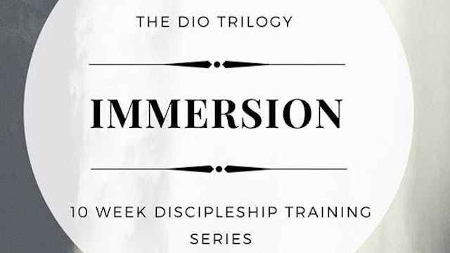 Immersion- Phase Two- Video Series