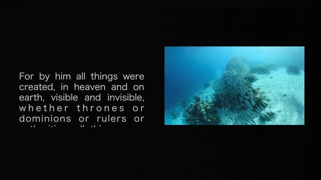 Immersion lesson 5 Creator Final