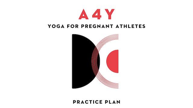 Yoga for Pregnant Athletes Practice Plan