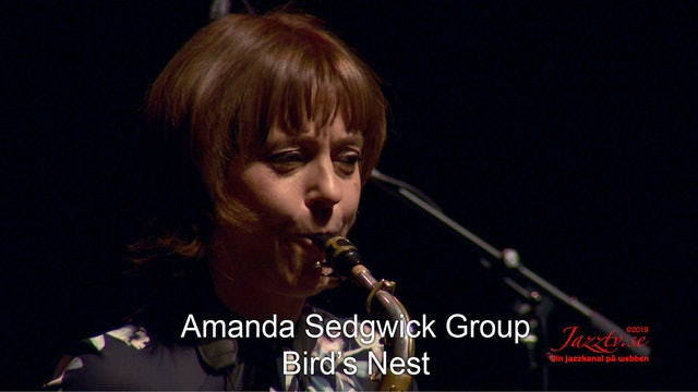 "Amanda Sedgwick Group ""Bird's Nest"""