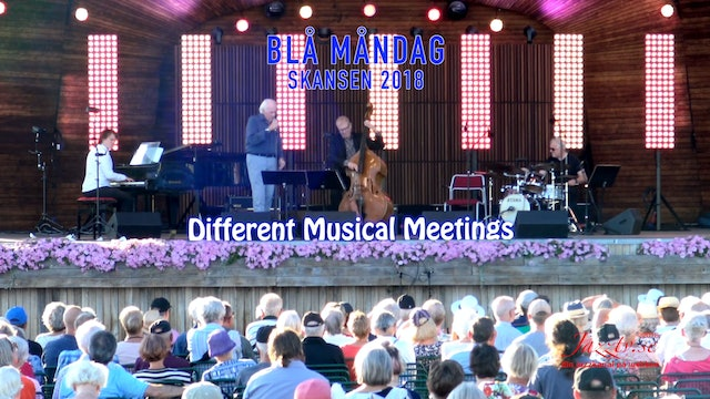 Different Musical Meetings, Skansen 2018