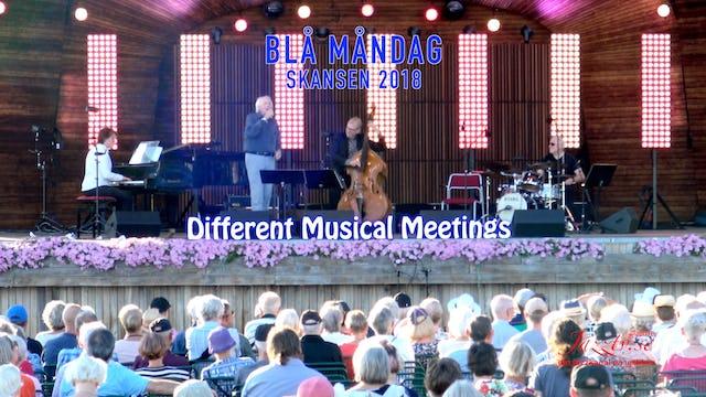 Different Musical Meetings - Skansen 2018