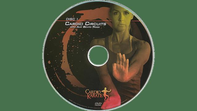 Cardio Karate - Cardio Circuits 