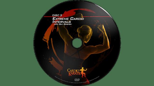 Cardio Karate - Extreme Cardio Intervals