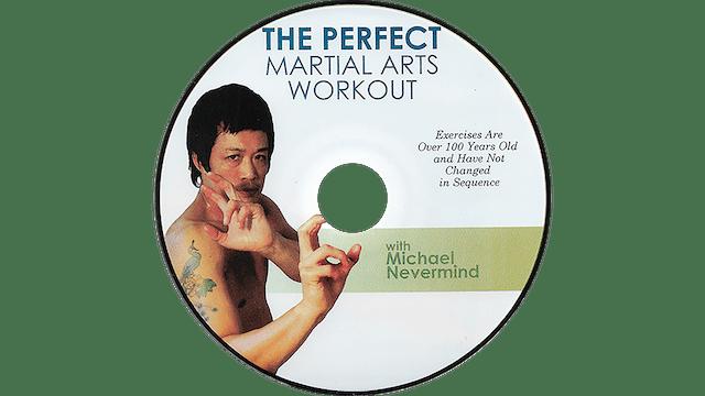 Martial Arts Workout - Michael Nevermind