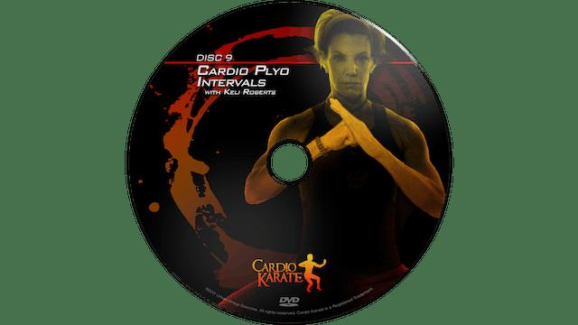 Cardio Karate - Cardio Plyo Intervals