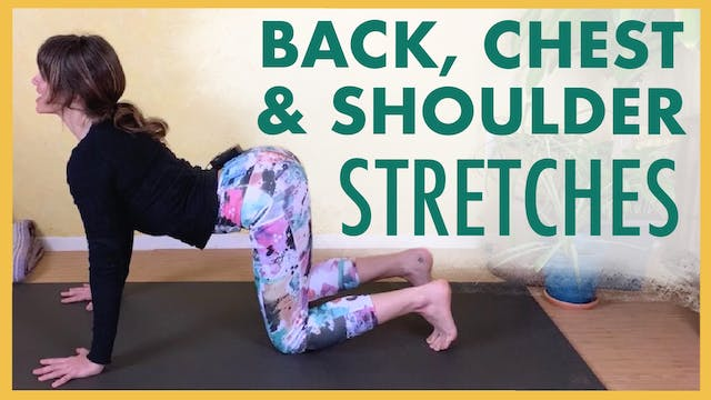 Beginner Stretches 2 - Back, Chest an...