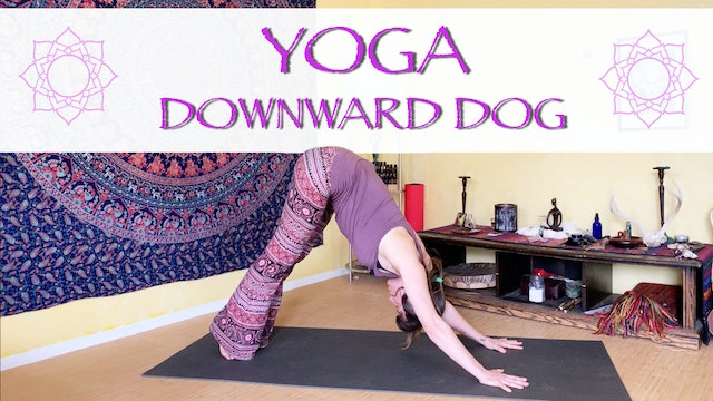 Movement Breakdown of Downward Facing Dog