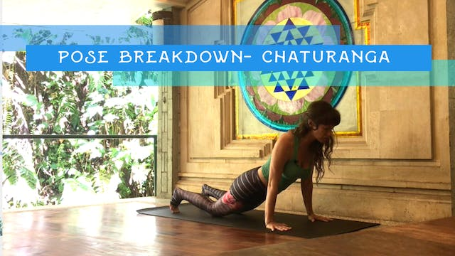 Pose Breakdown- Chaturanga
