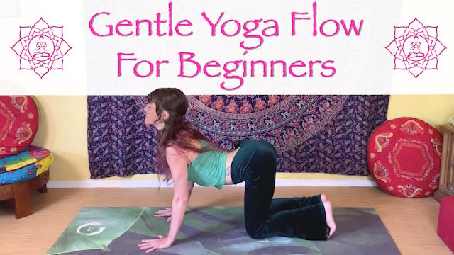 Gentle Yoga Flow for Beginners