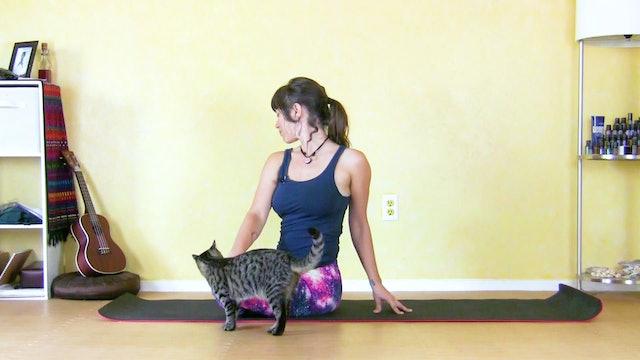 Morning Yoga Flow