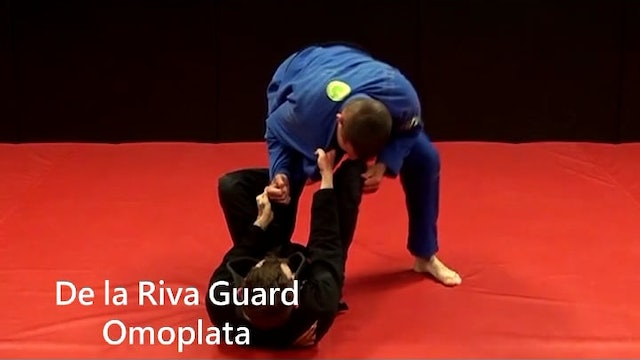 09. DLR Cross Collar & Sleeve Knee in Omoplata