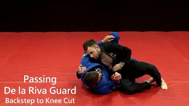 28. Passing DLR Backstep to Knee Cut