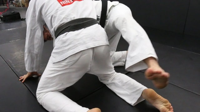 Leg Trap from Turtle Guard to Side Control - Eduardo Telles