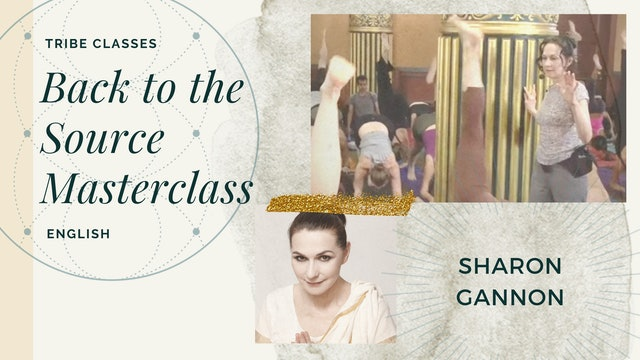 """Master Class: Tribe 2011 """"Back to the Source"""" - Sharon Gannon"""