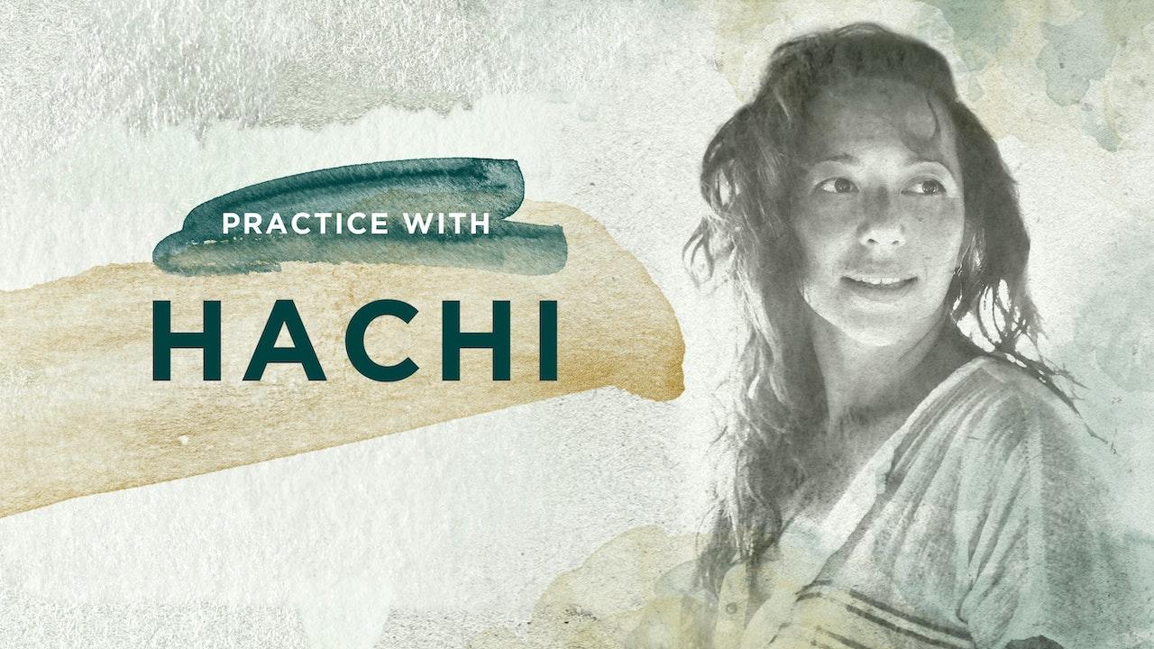 Hachi Yu