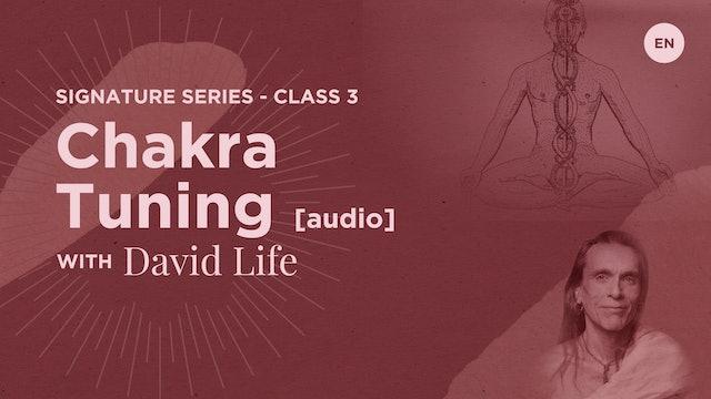 Signature Class 3: Chakra Tuning [audio]
