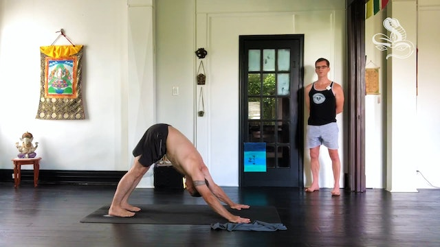 [Live] 90m Ashtanga 'Led Primary' - Cory Bryant