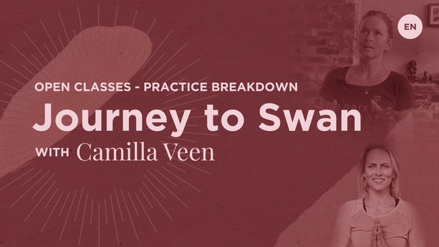10m Practice Breakdown 'Journey to Hamsasana' - Camilla Veen