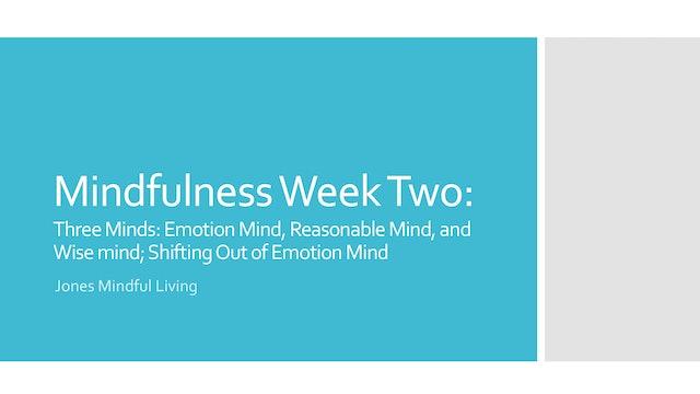 Mindfulness Week Two: Mind-States Part One PDF