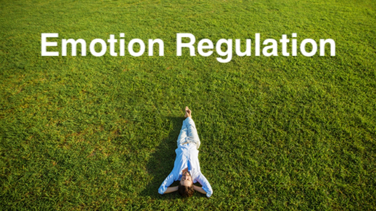 Emotion Regulation Skills Collection