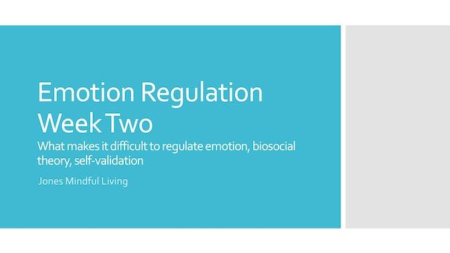Emotion Regulation Week Two PDF