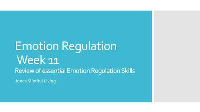 Emotion Regulation Week 11 PDF: Review