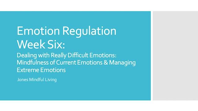 Emotion Regulation Week Six Presentation