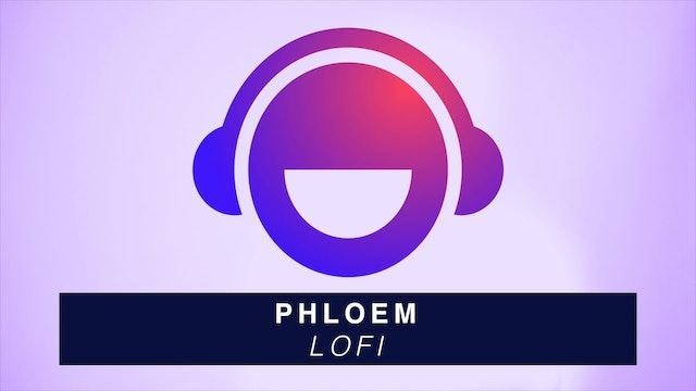 Phloem - LoFi