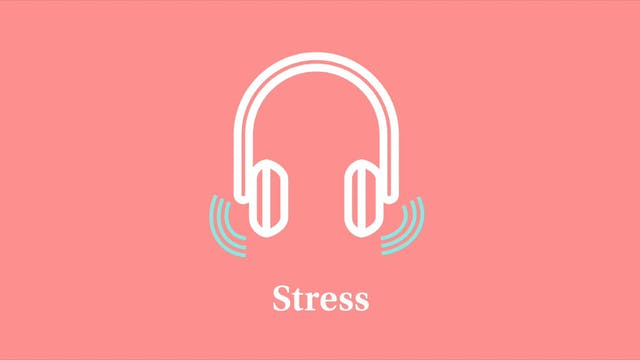 Stress: Part 4