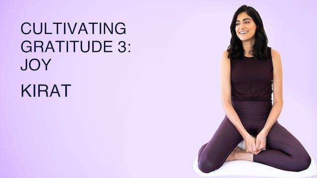 Cultivating Gratitude 3: Joy