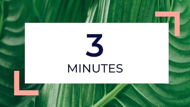 3 Minutes