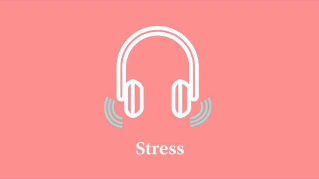 Stress: Part 3